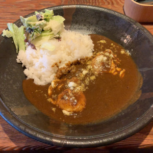 鎌倉のランチカレー&バー、MATCH POINTへ!黄身がとろける映えエッグカレーとキンキン昼ビールで、優雅なランチを堪能