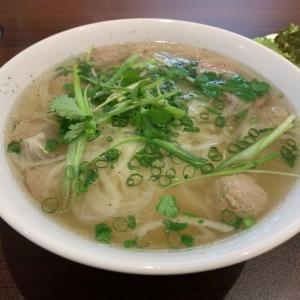 鎌倉の本場ベトナム料理フォーカットゥン!体の内側から温まるエスニック料理、パクチー香る絶品牛団子フォーが美味かった!!