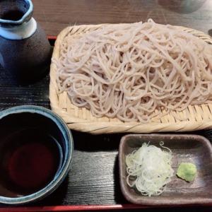 藤沢駅、そば酒房蔵(くら)の絶品蕎麦!ツルツル食感と抜群の喉越しを堪能するせいろ蕎麦と、ジューシーなシソ巻きつくね串