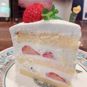 鎌倉カフェロマーノで超絶美味い映えショートケーキを堪能!熟練マスターの注ぐ味わい深いドリップがマジで格別だった